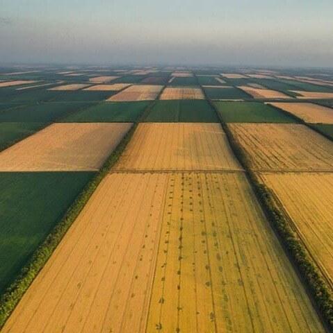 Земли сельскохозяйственного назначения от 2 до 65000 га